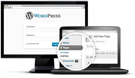 wordpress-design2