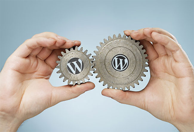 WordPress Theme or Custom Design?